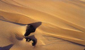 Great Sand Colorado